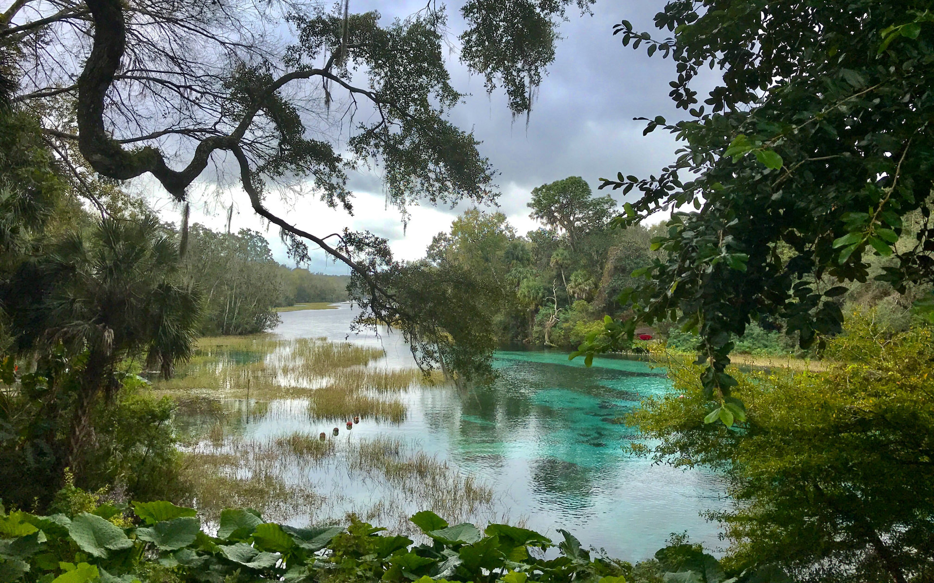 Rainbow Springs on a semi-cloudy day.
